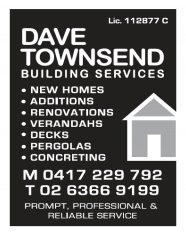 Dave Townsend Building Services